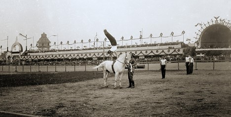 Man on hores at Slet held in Prague in 1901
