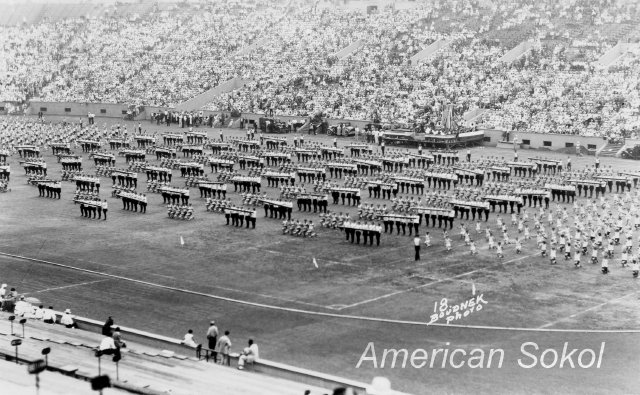 1,343 men and women & 302 juniors competed in gymnastics; 3,403 participated in mass calisthenic displays on the field