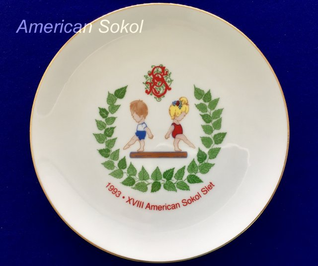 1993 XVIII ASO Slet plate